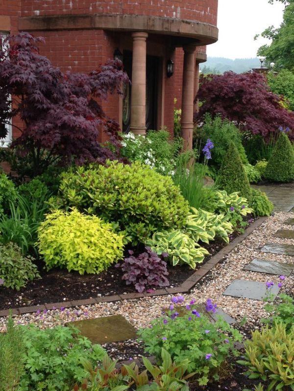 mixed plants & shrubs border. lookit