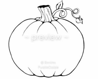 Pumpkin Printable Adult Color Page Create Your Own DIY