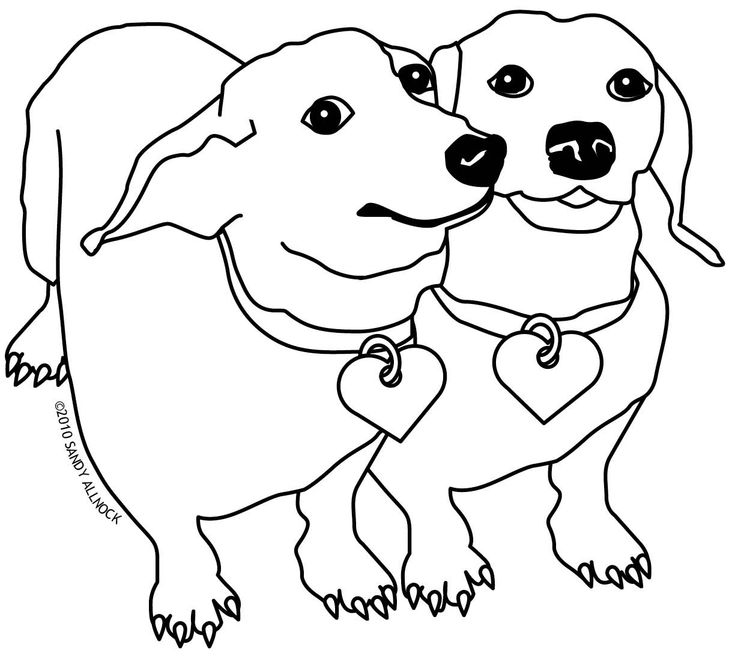 17 Best images about Dachshund Coloring Pages on Pinterest