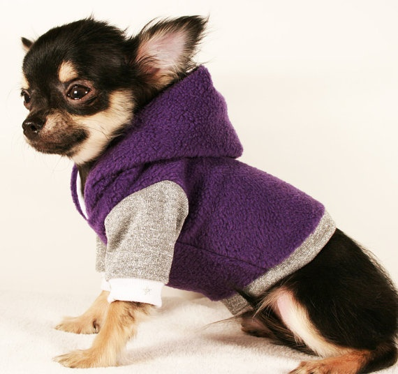 Dog Clothes XXS cute teacup Purple and Silver chihuahua