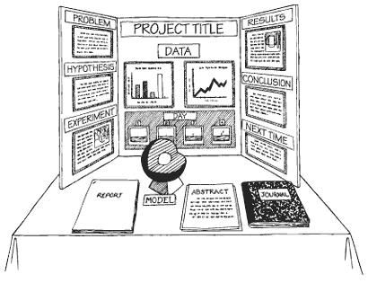 1000+ ideas about Science Fair Display Board on Pinterest