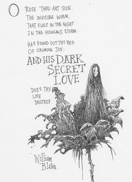 17 Best images about Children's Laureate Chris Riddell on
