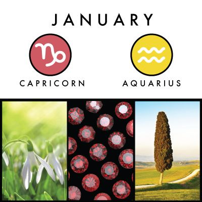 Zodiac Capricorn Until January 19 And Aquarius From