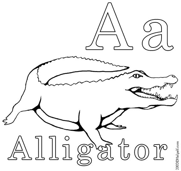 Activity: A is for Alligator. You will need: the A is for
