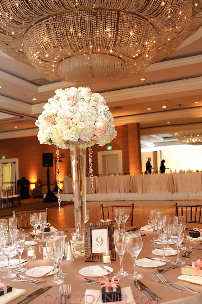My Wedding Coral Ivory and Champagne  Dream wedding
