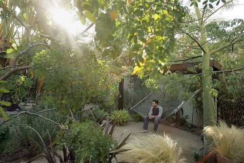 Southern California Gardens Google Search Garden Pinterest