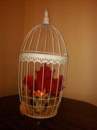 Best 25+ Diy Bird Cage ideas on Pinterest | Pet bird cage ...