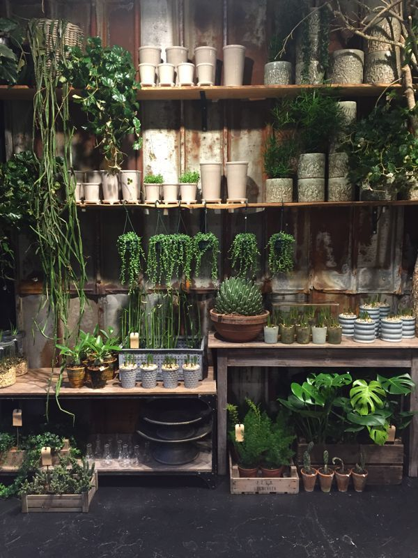 store fronts retail displays