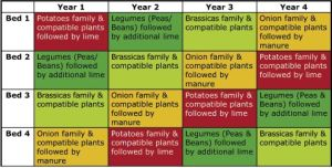 Another crop rotation chart | Growing | Pinterest