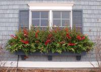 25+ best ideas about Winter Window Boxes on Pinterest