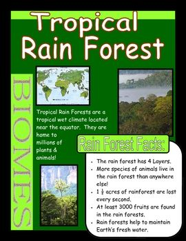 26 Best Images About Tropical Rainforest Biome On