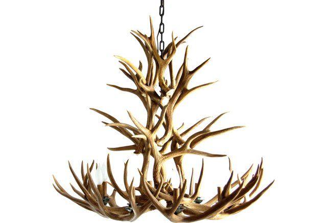 25+ best ideas about Antler chandelier on Pinterest