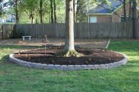 1000+ images about Retaining Wall around Trees on Pinterest