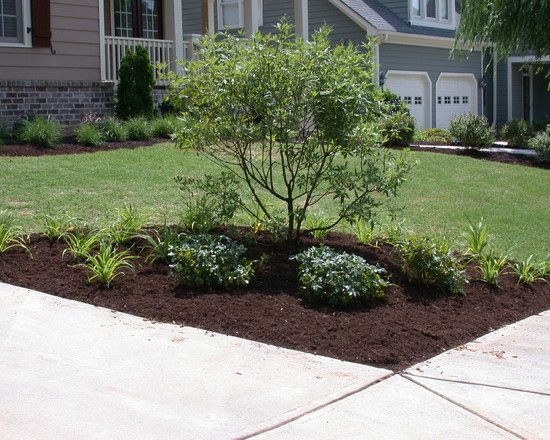 traditional landscaping front yard