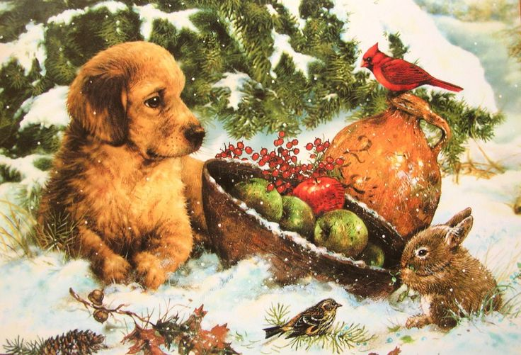 Greg Giordano Puppy Dog Bunny Rabbit Cardinal Birds Snow