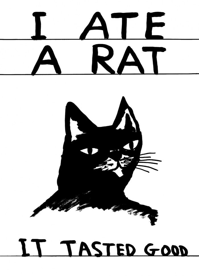32 best images about David Shrigley: Life and Life Drawing