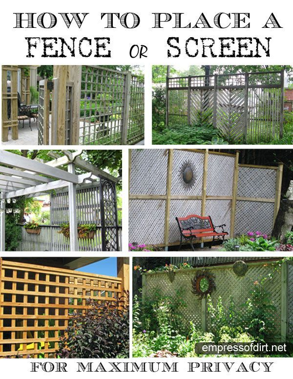 47 Best Images About GARDEN Privacy Ideas ♥ On Pinterest