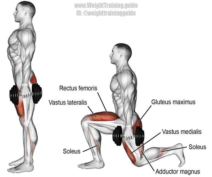 17 Best ideas about Gastrocnemius Exercises on Pinterest