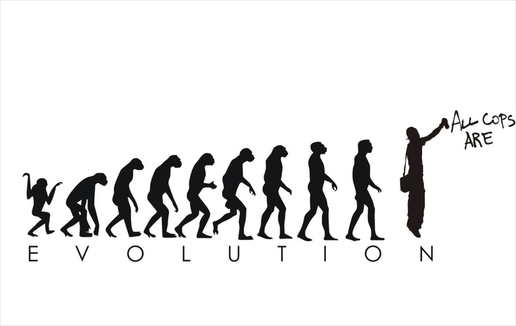25+ best ideas about Darwin evolution on Pinterest