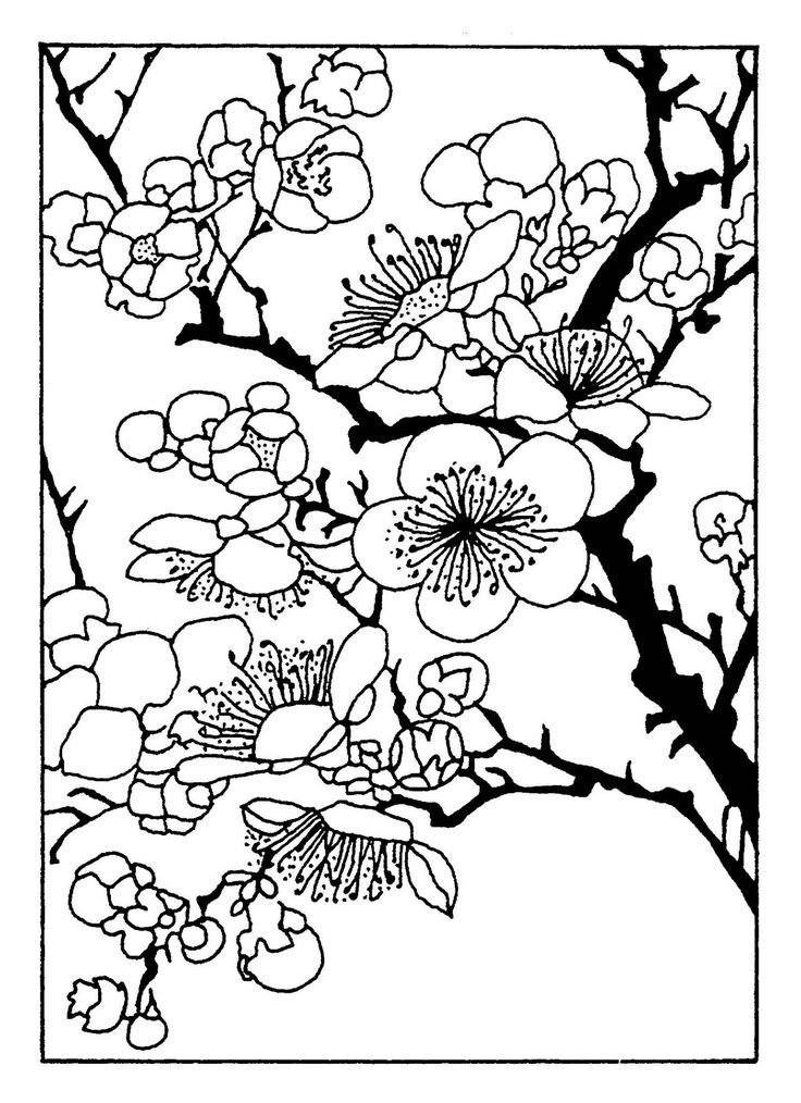 389 best images about Template for drawing / needlework on