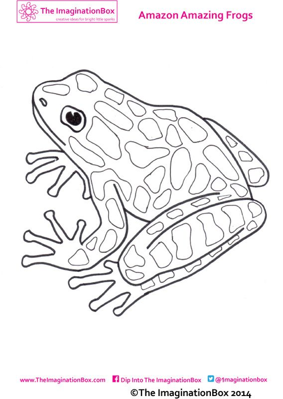 323 best images about coloring pages animals on Pinterest
