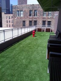 Roof, Deck, & Patio products | Fake grass, Grasses and ...