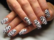 1000 ideas zebra nail design