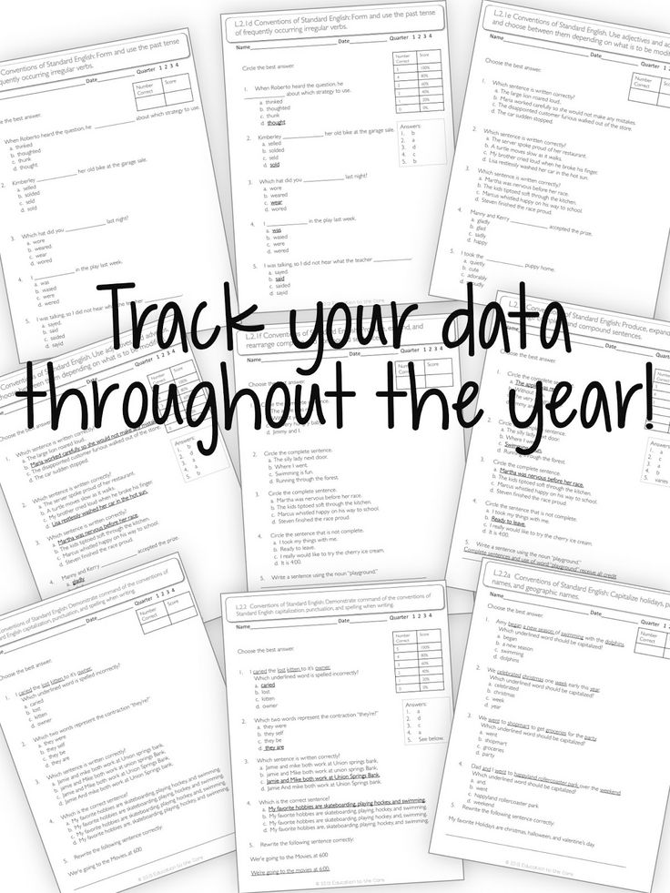 17 Best images about Data Binders on Pinterest