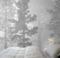 15+ best ideas about Photo Wallpaper on Pinterest   Forest ...