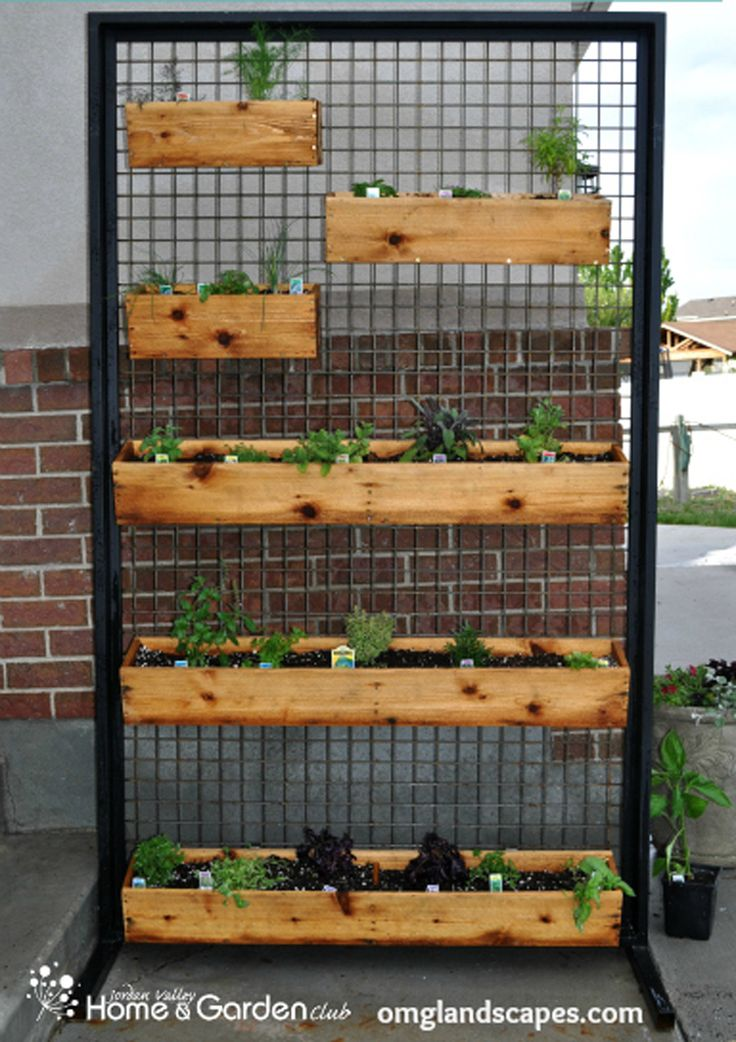 The 25 Best Ideas About Herb Wall On Pinterest Kitchen Herbs