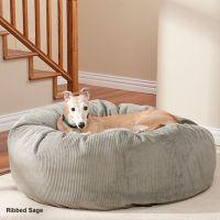 Best 25+ Pet lovers ideas on Pinterest | Dog loss, Pet ...
