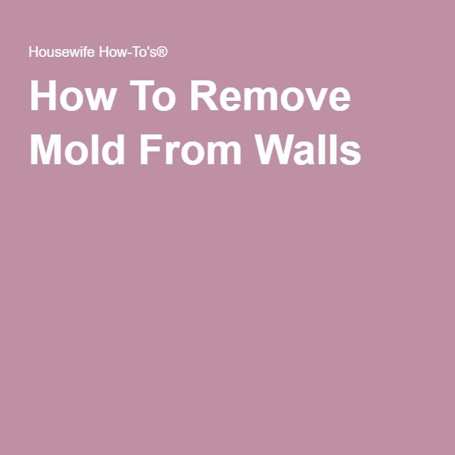1000 ideas about Remove Mold on Pinterest  Remove Black