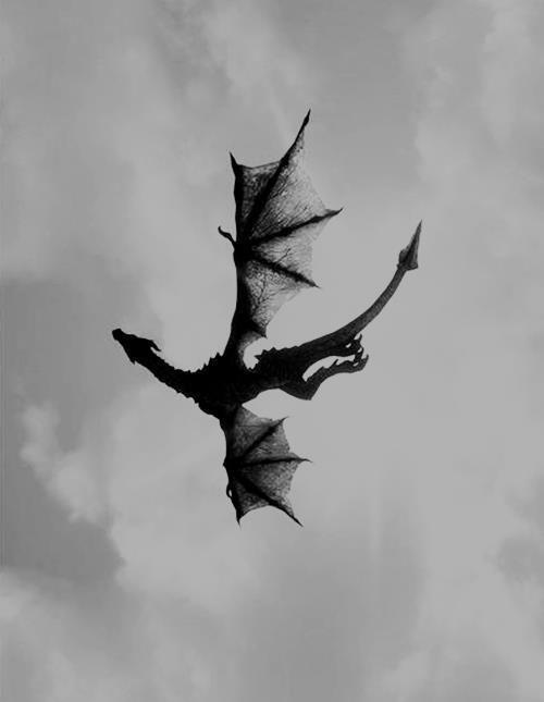 1000 ideas about Japanese Dragon on Pinterest Dragon