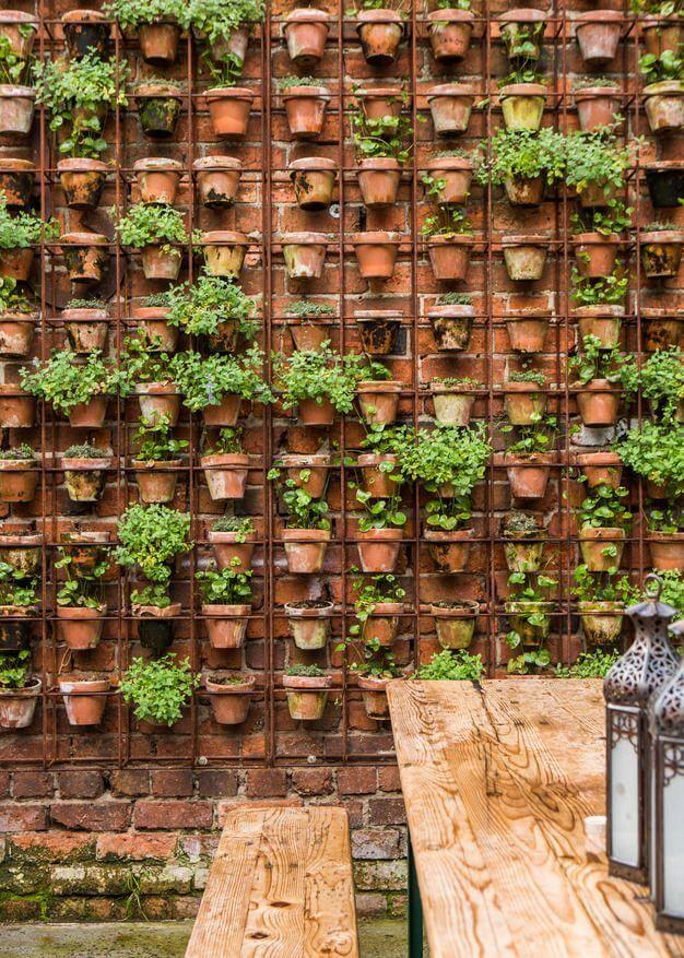 25 Best Ideas About Vertical Garden Wall On Pinterest Wall