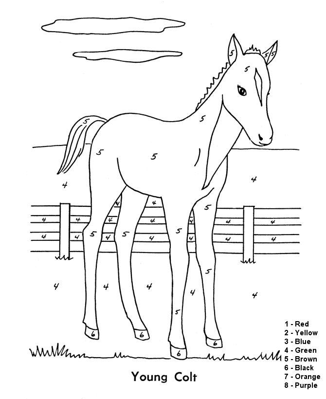 Horse Activities For Kids