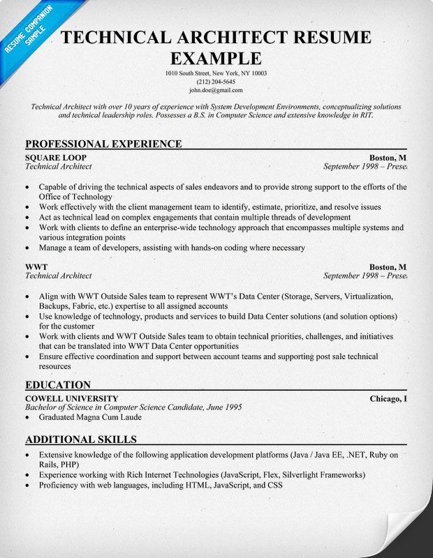 Technical Architect Resume Example