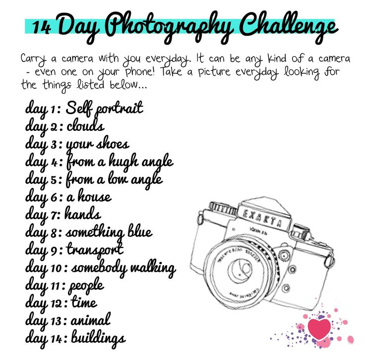 i heart teaching art: lesson idea: 14 Day Photography