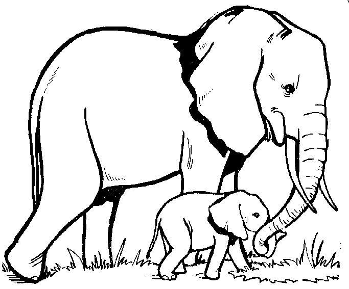 38 best images about Zen Elephants ref. on Pinterest