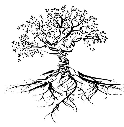 1000 Ideas About Tree Roots Tattoo