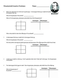 Printables. Genetics Worksheet. Mywcct Thousands of ...