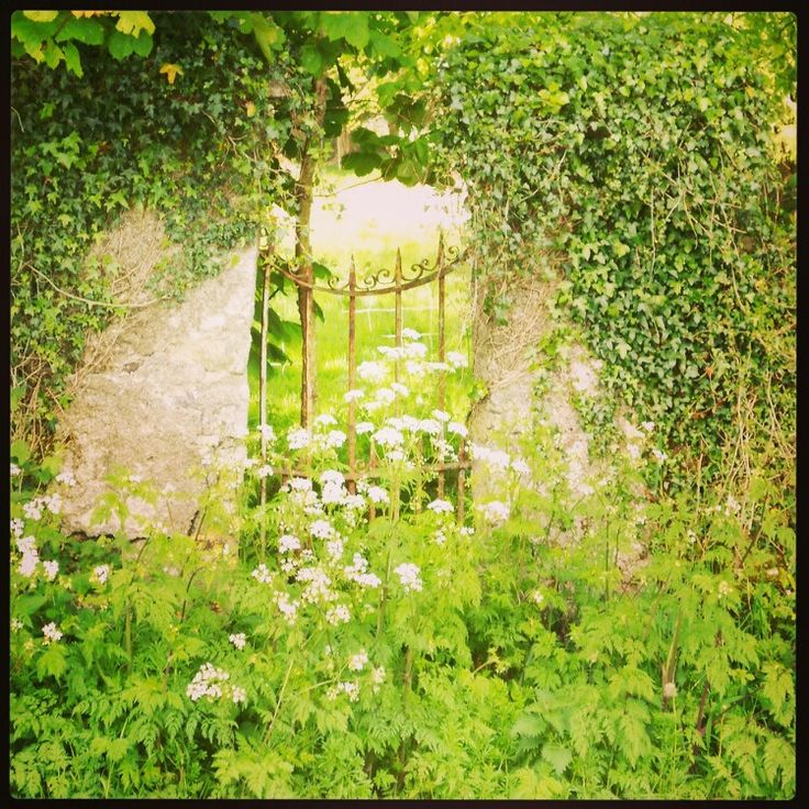 13 best images about Irish Gardens on Pinterest