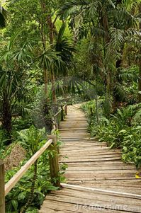 31 best images about pathways on Pinterest | Pictures of ...