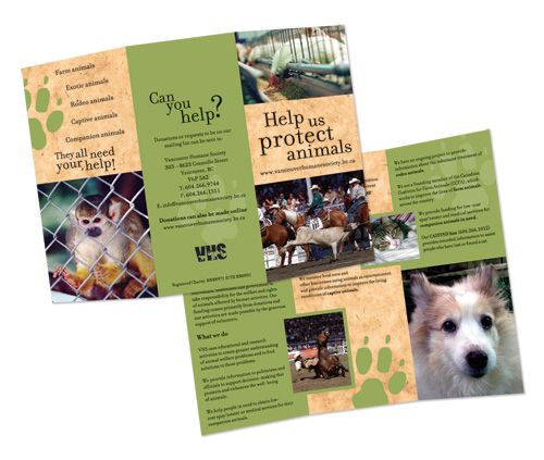 29 Best Images About TriFold Animal Brochures On Pinterest