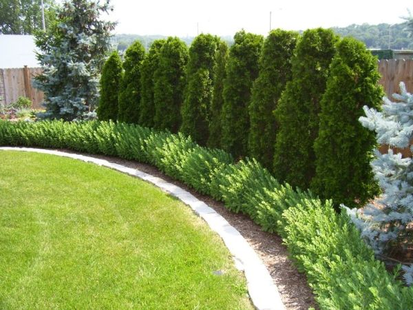 landscaping fence ideas