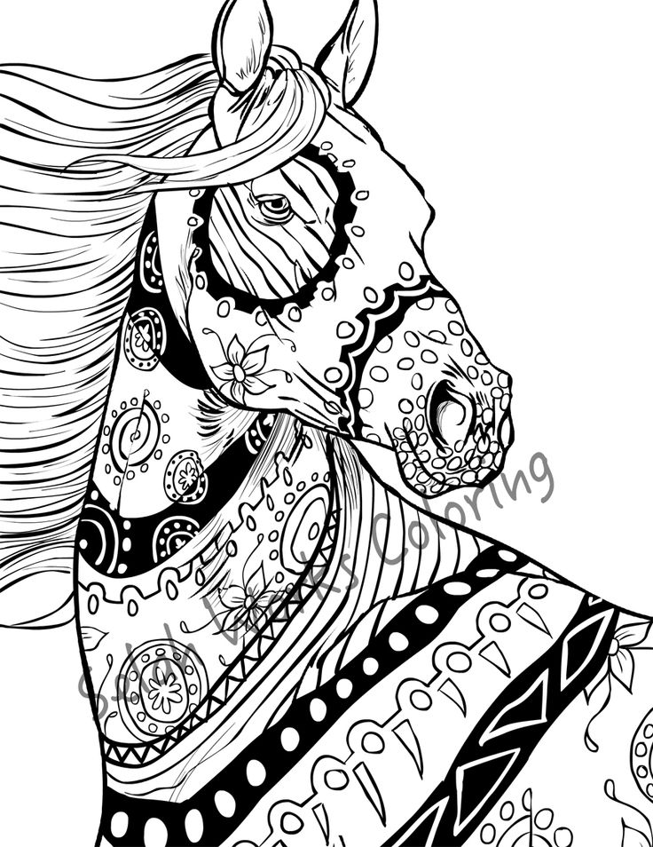 1000+ ideas about Horse Coloring Pages on Pinterest