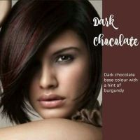 17 Best ideas about Chocolate Hair Colors on Pinterest ...