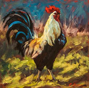 80 best images about Colorful Roosters on Pinterest