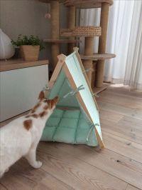 17 Best ideas about Cat Tent on Pinterest | Diy cat tent ...