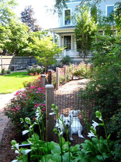 The 25 Best Ideas About Dog Friendly Garden On Pinterest Dog