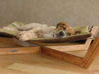 25+ Best Ideas about Dog Hammock on Pinterest   Dog ...